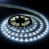 Alta calidad en forma de S LED de luz de tira flexible 2835
