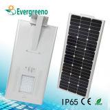 통합되는 2017의 최신 판매 또는 원격 제어를 가진 1개의 태양 LED 정원 가로등에서 모두