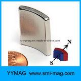 Parti a magnete permanente basse del generatore del magnete RPM dell'arco del neodimio