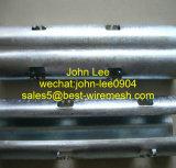 Collier de treillis en treillis métallique de vignoble