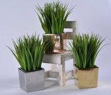 Piante acquatiche chiare artificiali con conservato in vaso di ceramica di placcatura per la decorazione ufficio/della casa
