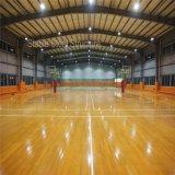 Gimnasia del gimnasio del edificio del metal para la venta