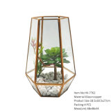 Hot of halls Reptile Glass Terrarium Preserved Fresh Flower