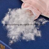 Duvet barato de la pluma de la base los 4-6cm de la venta al por mayor de la alta calidad del precio