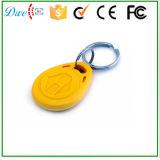 RFID 꼬리표 중요한 꼬리표 열쇠 고리 125kHz Contactless 접근 제한