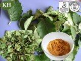 10:1 выдержки листьев березы, 20:1; Флавон 5%-10%