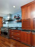 De Noordamerikaanse Moderne Kast van de Keukens van de Flat