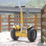 Scooter électrique se pliant d'équilibre de roue de l'adulte 2