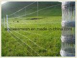 Sailin ha galvanizzato la rete fissa del campo