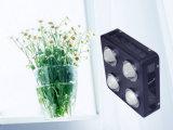 La DEL économiseuse d'énergie élèvent la lampe 500W avec le légume et la fleur
