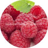 純粋で自然な ラズベリーのエキスかラズベリーのケトンエキスまたはラズベリーの葉のエキス