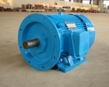Hoher leistungsfähiger P.M.-synchroner Motor /Generator13-22kw