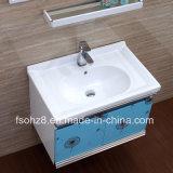 Semplicemente ma vanità moderna della stanza da bagno dell'acciaio inossidabile con la mensola