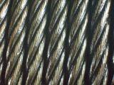 Cuerda de alambre de acero pesada de la grúa de Ungalvanized 4X31+FC de la grasa