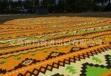 Superpicknick-und Strand-Matten-kampierender im Freien umfassender beweglicher schlafender Matten-Matratze-Auflage-Kissen wasserdichter Xs Inder
