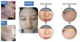 얼굴 기계를 위한 Moisuture 주입 산소를 희게하는 2017 최신 피부