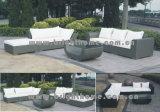 Установленная мебель мебели сада/ротанга патио (BL-802 & BL-802P)