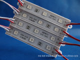 Altos módulo de epoxy del RGB 5050 brillantes LED con 3LEDs