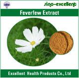 Extrait chaud de fleur de Feverfew de produit naturel de vente