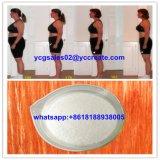 減量のための高品質のLカルニチン、体脂肪541-15-1