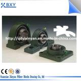단 하나 줄 무쇠 Ht180-200 방위 주거 플랜지 방위 단위 또는 베개 구획 방위 UCFL205