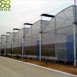 Hoch entwickeltes Plastikfilm-landwirtschaftliches Gewächshaus für das Rosen-Pflanzen