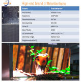 Verwendete 250*250mm P3.91 RGB LED Baugruppen-Innenbildschirmanzeige