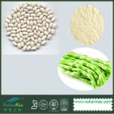 Extrait blanc naturel d'haricot nain de 100% (1% Phaseolin)