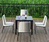 خارجيّة حديقة فندق وقت فراغ يتعشّى [ب] [رتّن] طاولة وكرسي تثبيت أثاث لازم