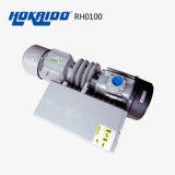 Bomba de Vacío Rotatoria Lubrificada por Aceite de Paleta de Sola Etapa de la Eficacia Alta (RH0100)