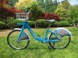 Doppie spalle blu Bicicletta-Brillanti pubbliche e una bici della forcella anteriore