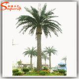 中国の製造業者庭の装飾のための大きい人工的なデータヤシの木