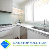 Mobilia bianca degli armadi da cucina di rivestimento della lacca di colore della nuova maniglia di alluminio (ZY 1061)