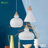 Indicatore luminoso domestico decorativo antico del lampadario a bracci di illuminazione/illuminazione Pendant Byzg1002