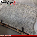 Comptoir de granit Santa Cecilia pour projet américain
