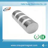 Magnete permanente sinterizzato di NdFeB di figura del cilindro della terra rara