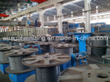 Eletro Plating Equipment para Steel Wire