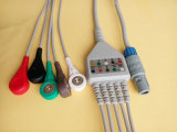 Kabel des Biolight Plastik6pin 5 ECG