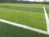 Erba artificiale livellata globale per il passo di calcio e di gioco del calcio