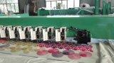 De goedkope Machine van het Borduurwerk van Chenille van de Prijs voor Industrie van het Kledingstuk