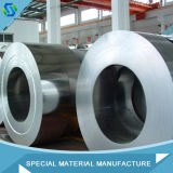 316 laminou a bobina/correia/tira do aço inoxidável feita em China