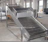 Transportador de rodillo (acero inoxidable, alta calidad)