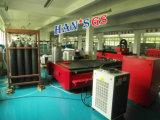 machine de découpage automatique de vente chaude en métal de laser de fibre du DAO 1000W