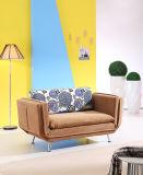 居間の家具の普及したソファーベッド