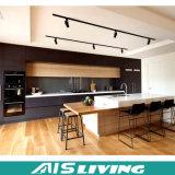 Cabina de cocina moderna de la chapa de la tarjeta de la melamina para los muebles caseros (AIS-K085)
