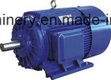 Motor eléctrico trifásico de la CA de la eficacia de IP44high