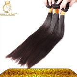 Волосы 100% самых больших человеческих волос оптовой продажи поставщика бразильские (FDX-YY-KBL)