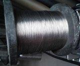 Обыкновенная толком ячеистая сеть нержавеющей стали Weave SUS302 голландеца