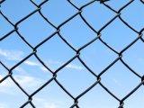 Профессионал гальванизированный/коррозионная устойчивость PVC Coated высокая загородка звена цепи
