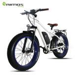 26*4.0 Dolphine電池250W 500W 750Wの脂肪質のタイヤの電気自転車